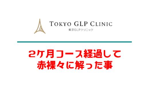 【まとめ】GLP-1ダイエット2カ月コースを体験して解った事+注意点